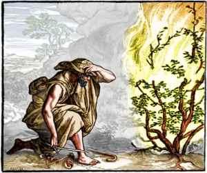 God revealed as a Burning Bush