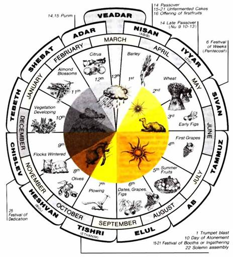 BLCF: astrolological chart