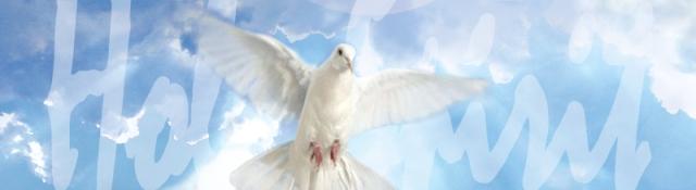 BLCF: dove-holy-spirit