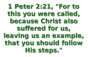 BLCF: Jesus-example