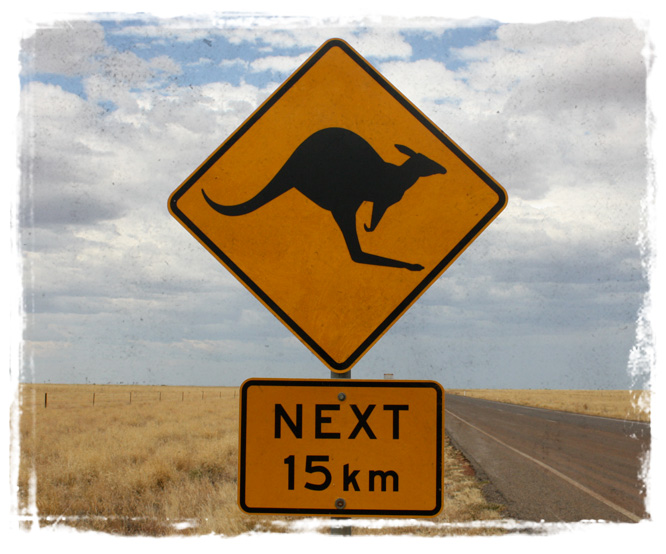BLCF: 15km_kangaroo_sign