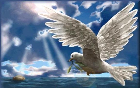 BLCF: dove_ark_hope_olive_branch