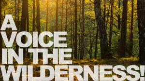 BLCF: voice in the wilderness