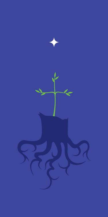 BLCF: advent_root_of_jesse