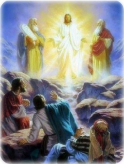 BLCF: the transfiguration