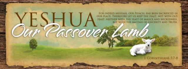 BLCF: Yeshua_Passover_Lamb