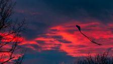 BLCF: kite_before_sunset