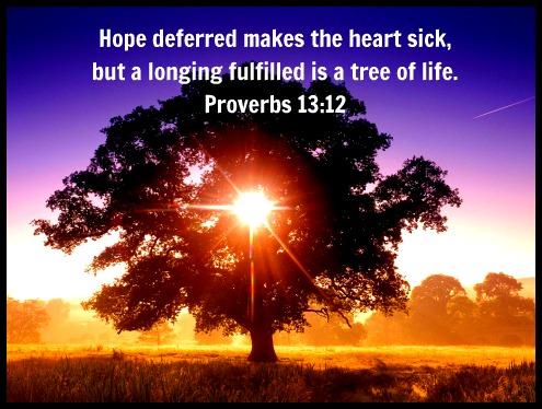 BLCF: Proverbs 13-12