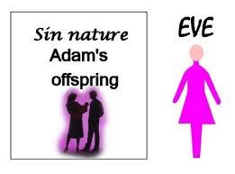BLCF: sins_legacy