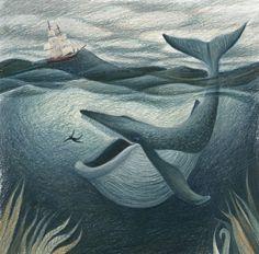 BLCF: Jonah3