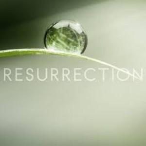 BLCF: resurrection2