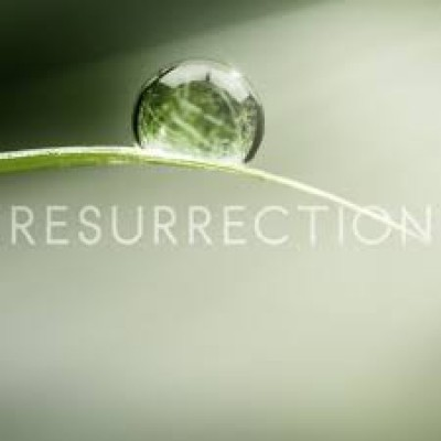 BLCF: resurrection2