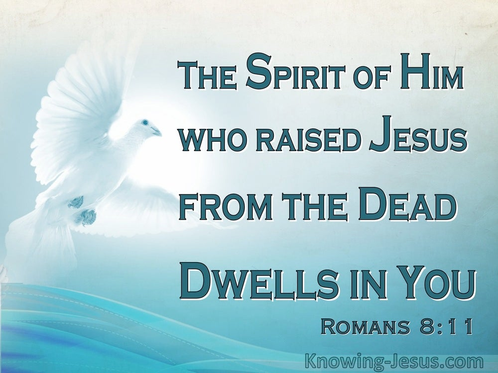 Romans 8-11 He Who Raised Christ Dwells In You - Holy Spirit