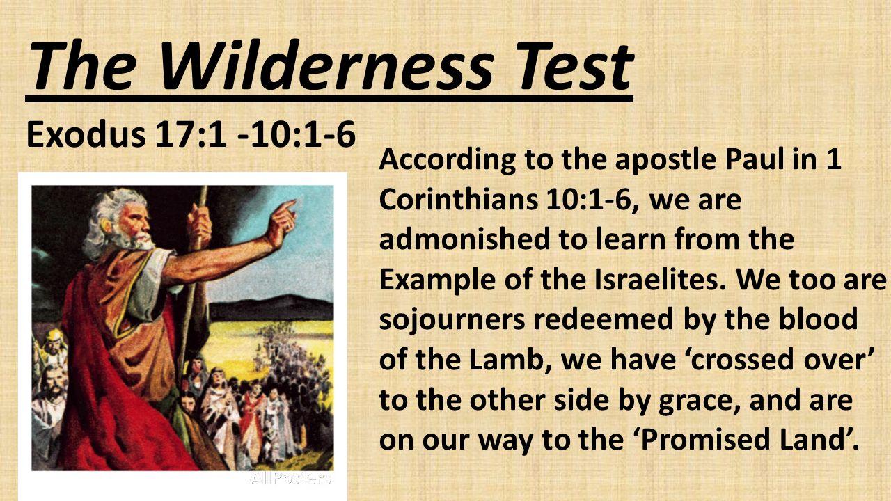 Wilderness Test